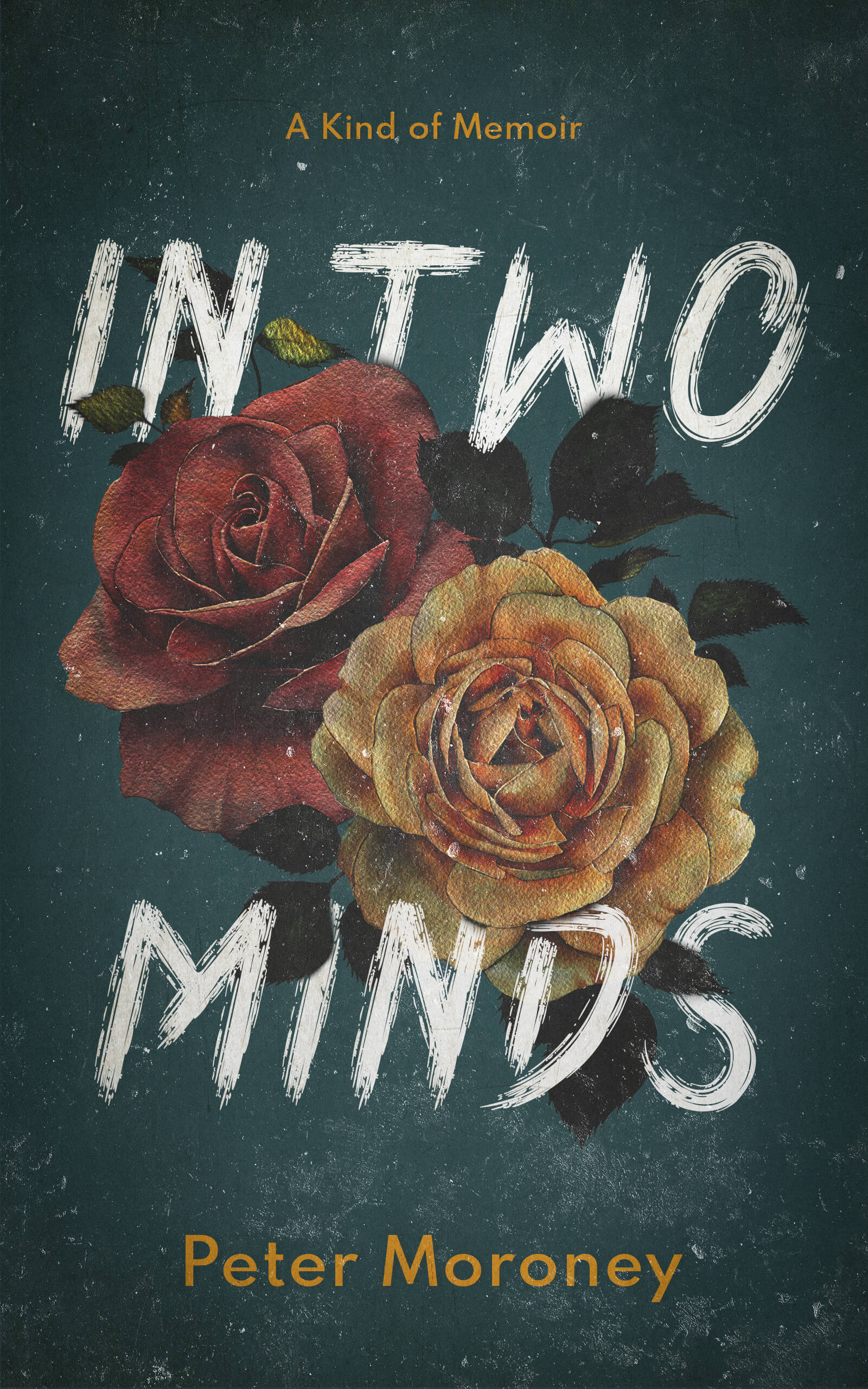 In Two Minds v2SMALL